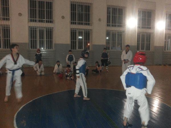 Внутришкольный турнир по тхэквондо, приуроченный ко Дню Мира ЧР